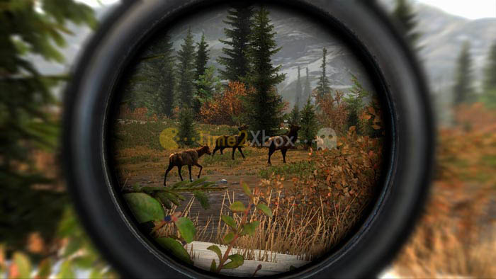 Скачать торрент Cabela's Big Game Hunter: Pro Hunts [GOD/ENG] на xbox 360 без регистрации